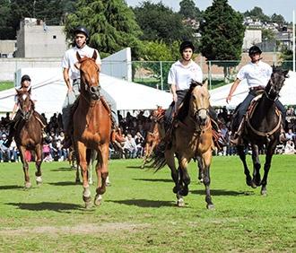 colegios-en-el-df-equitacion.png